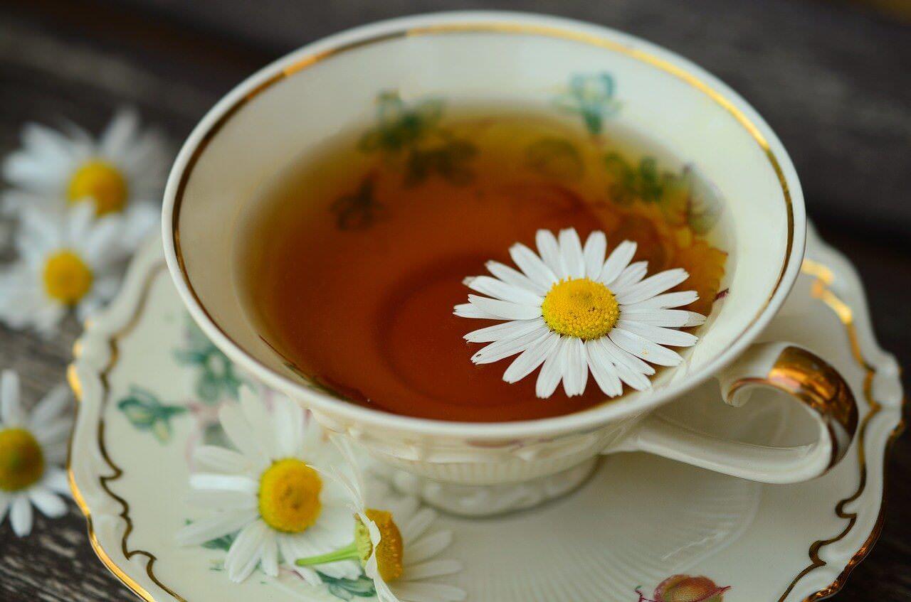 minimal traveler, yogi tea ayurveda, organic004